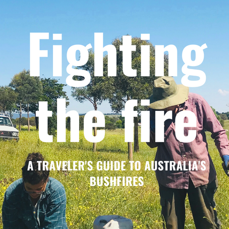 Fighting the fire: A traveler's diary into Australia's bushfires