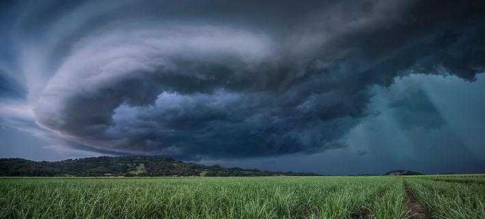 Murwillumbah,+NSW.jpeg