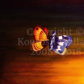 Butterflies-at-Sunset_20_x_16_cw.jpg