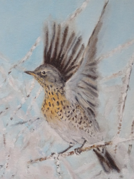 Fieldfare-oil.jpg