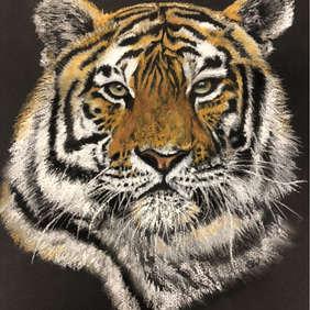 Tigress, Gill Whitehead