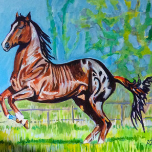 Thoroughbred stallion expressing himself.