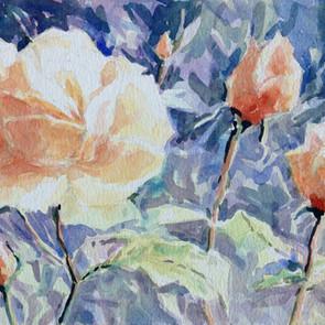 Garden-Roses-watercolour.jpg