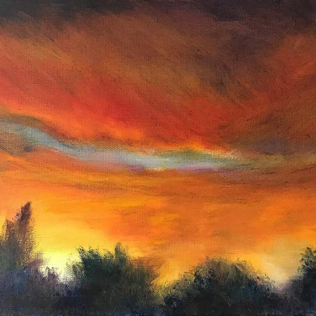 Garden Sunset.