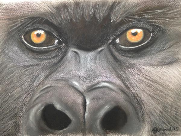 Gorilla-pastel.jpg