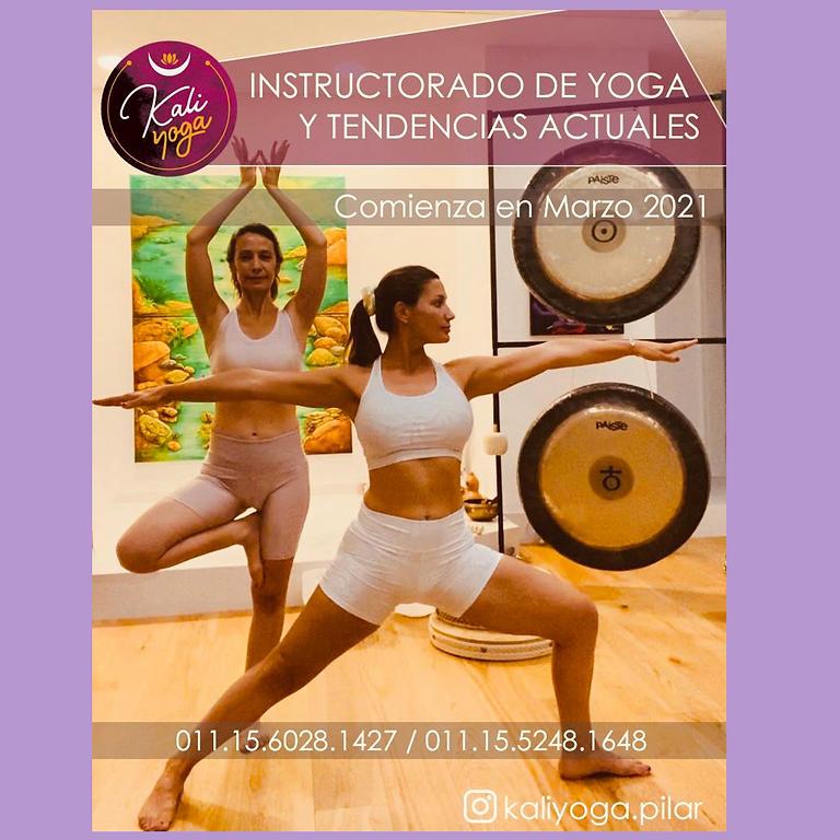 Instructorado Presencial de Yoga y Tendencias Actuales