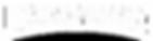 NV_Logo_OneColor_CMYK_WHITE.png