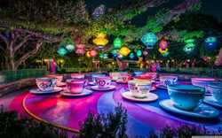 104593-Disneyland-theme_parks-trees-lant