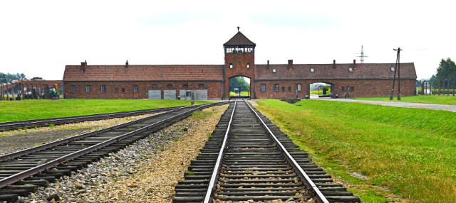 excursion-auschwitz-birkenau-grid.jpg