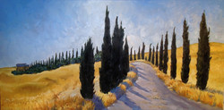 Tuscan Cypress trees '09