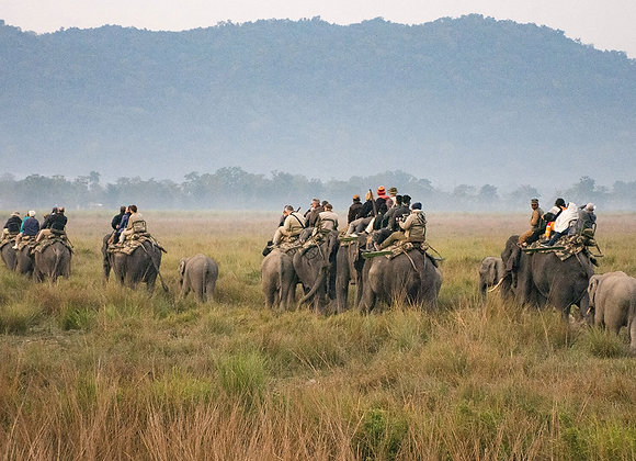 Guwahati with Kaziranga National Park Tour