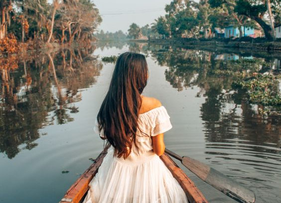 Luxurious Thekkedy & Alleppey
