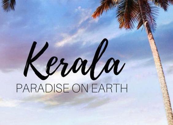 Premium Kochi Munnar & Thekkedy
