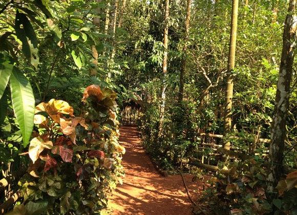 Luxury Goa with Sahakari Spice Farm
