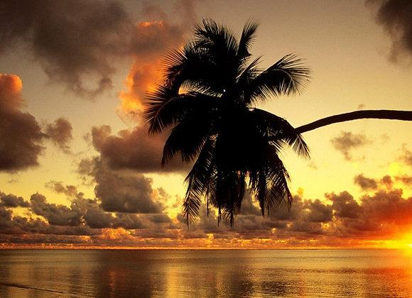 Best Of Cook Islands (6N/7D)