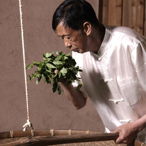 Anxi Oolong Tea/Tieguanyin Tea, Tea farmer/Tea Maker Direct Wholesale