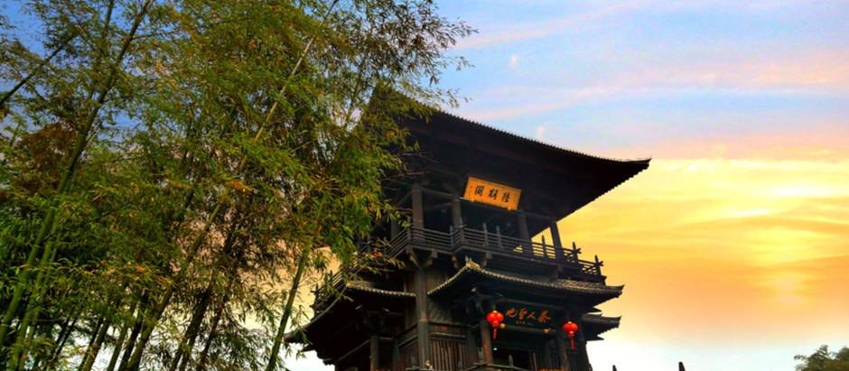 Zisun (Purple Bamboo Shoot) Tea from Mt.Guzhu
