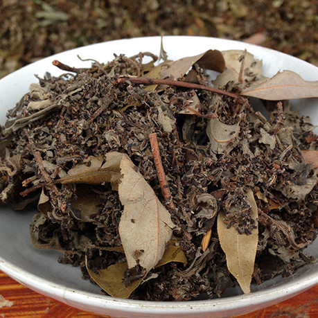 Insect Droppings Tea