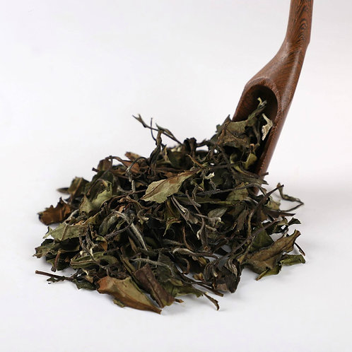 Aged White Tea,  Fu Ding White Tea Wholesale