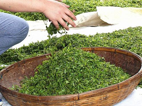 Laoshan Mountain Organic Tea, Tea farmer/Tea Maker Direct Wholesale
