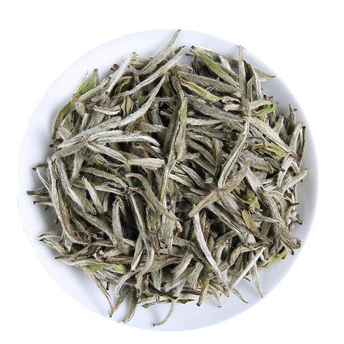 Silver Needle White Tea, Fu Ding Bai Hao Yin Zhen Tea Wholesale