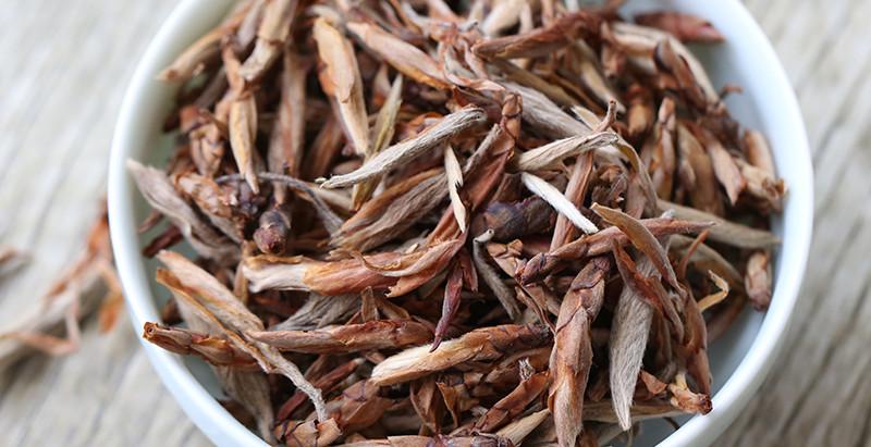 Hawk Tea
