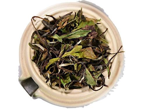 Shou Mei Tea, Gong Mei Tea, Fu Ding White Tea Wholesale