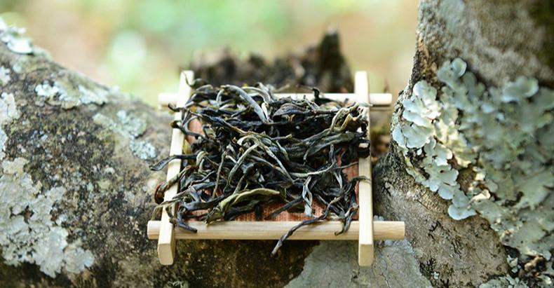 Unfermented Pu'er Tea