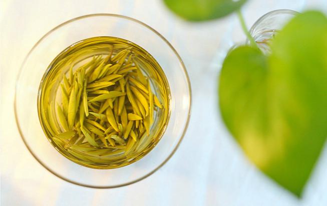Jun Shan Yin Zhen Tea, Chinese Yellow Tea