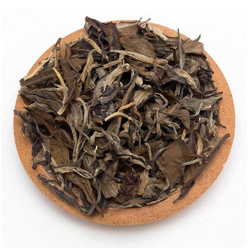 Aged White Tea,  Fu Ding White Tea Wholesale