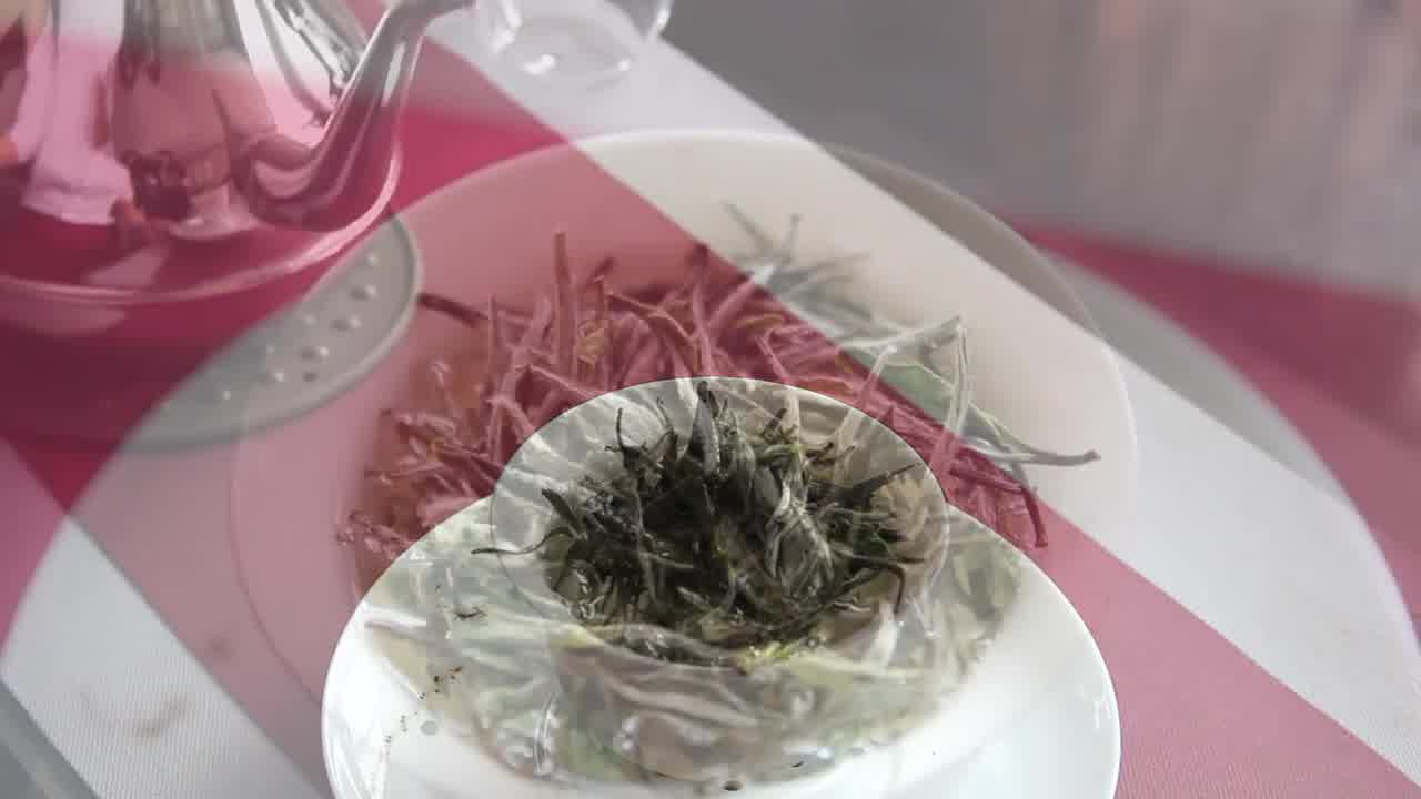 Top Tea Life --- Bai Mu Dan White Tea