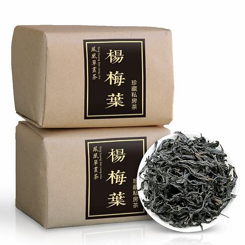 YangMeiYe Dancong, Feng Huang Dan Cong Oolong Tea Wholesale