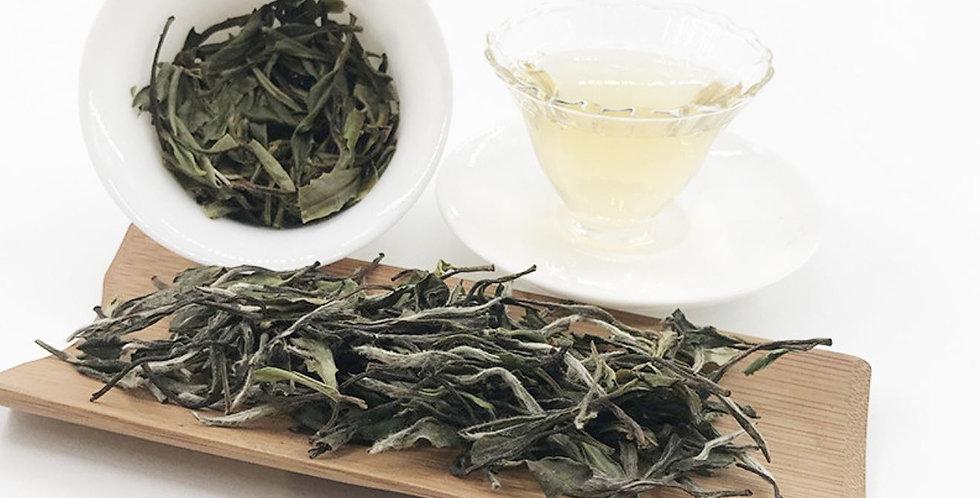 Jian Yang Xiao Bai Tea