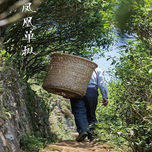 20/A varieties of Fenghuang(Phoenix)Dancong Oolong Tea, Tea farmWholesale