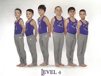 Level 4s.png
