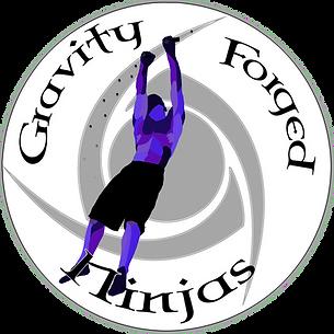 Ninja IG Logo.png
