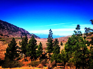 Canary Islands.jpg