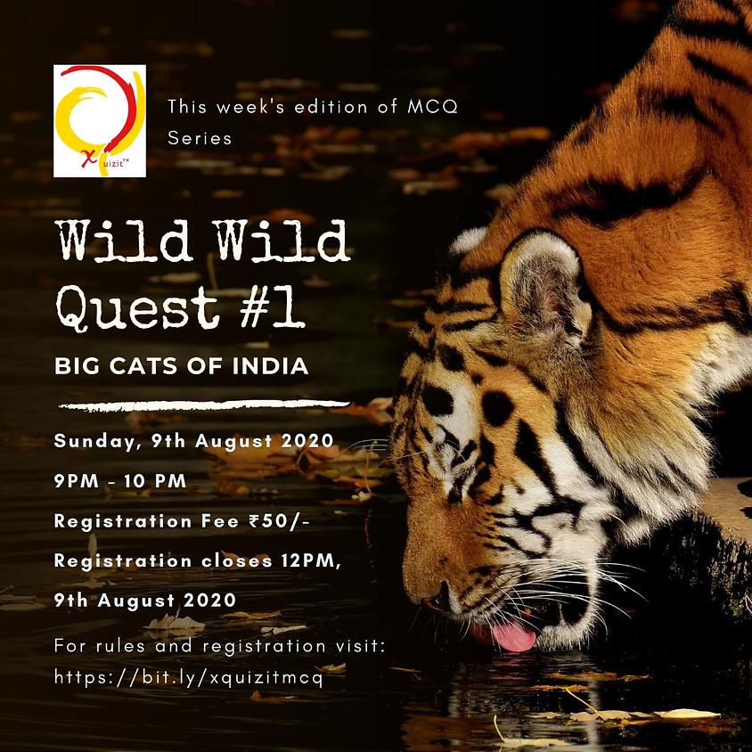Wild Life Quest - Big Cats Of India