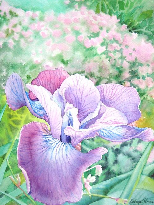 Plum Frolic Iris Print