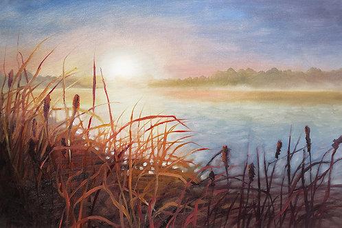Cattail Sunrise, Michigan Print
