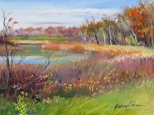 Early Fall Wetlands, Michigan Print