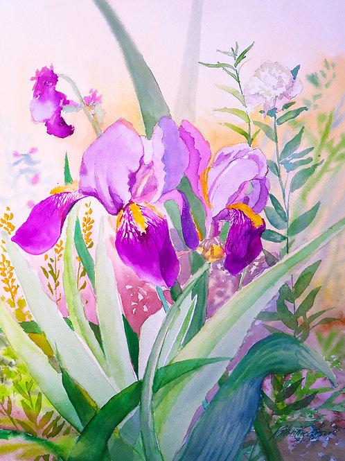 02 Paintout Watercolor Iris
