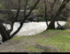 Raging Coyote Creek
