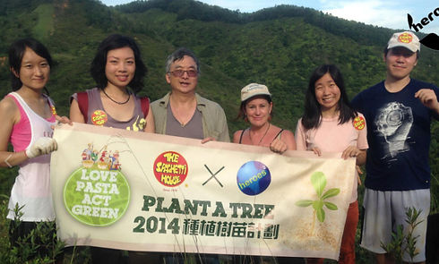 programs-reforestation.jpg