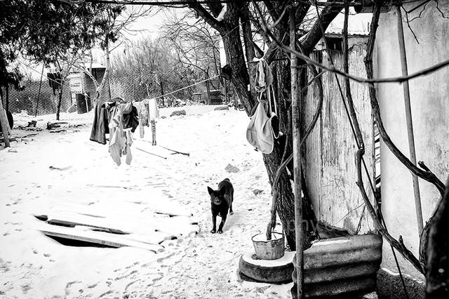 christmas in moldova-02.jpg