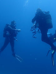 Divers 2.JPG