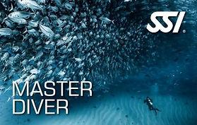 472566_Master Diver (Small).jpg