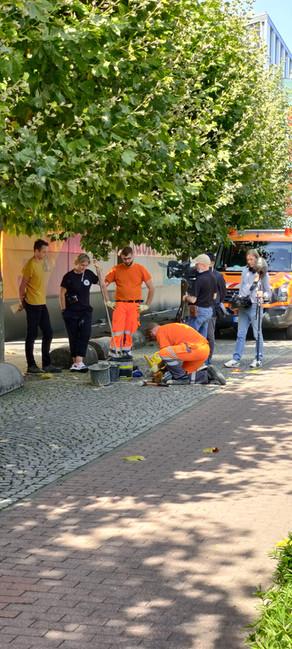 Stolpersteine in Ergo-Platz