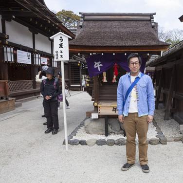 KYOTO SHIMOGAMO JINJA, D-1