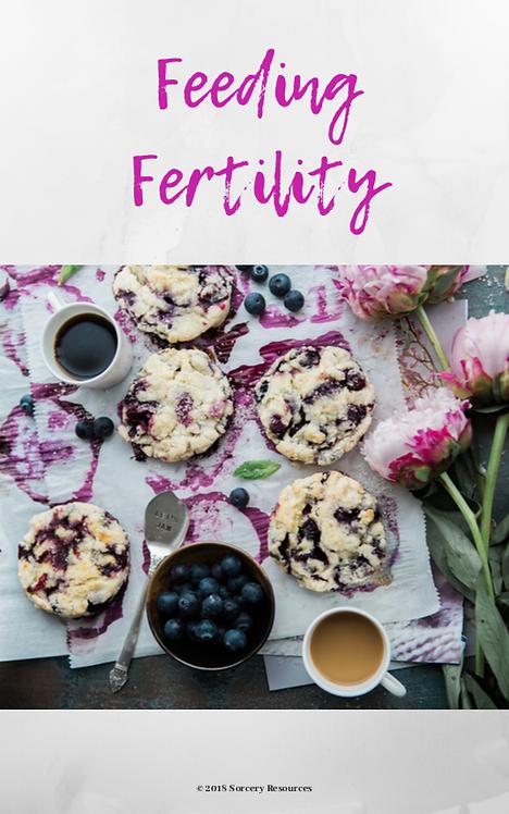 Feeding Fertility ebook
